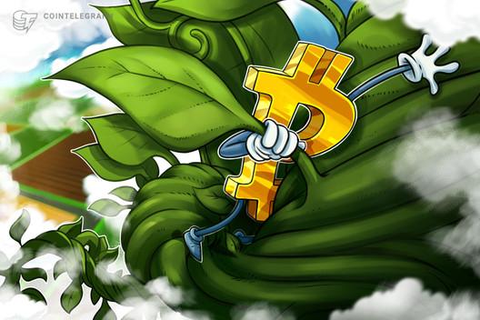 Bitcoin Price Ready for $10K Retest as Algorand, Tezos Continue Surge
