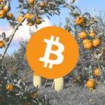 Digital Currency Group investeert $100 miljoen in Bitcoin mining bedrijf