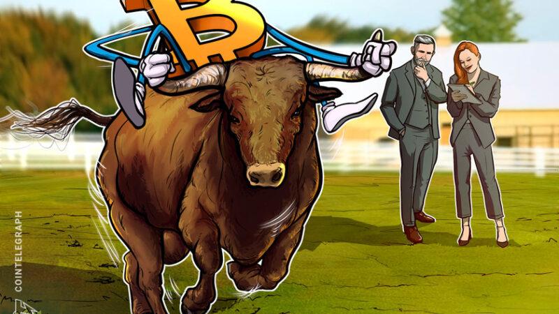 Bitcoin options still bullish despite this week's $900 BTC price drop