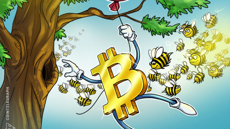 Experts say institutions drove Bitcoin's rise to $19K and that alt-season is coming