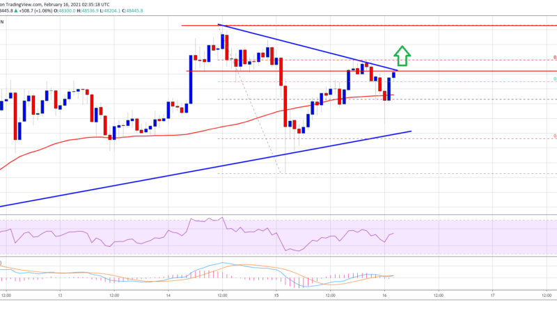 TA: Bitcoin Holding Gains Above $45K, Why BTC Rally Isn't Over Yet