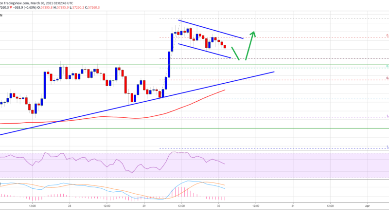 TA: Bitcoin Holds Strong, Why BTC Could Soon Rally To $60K