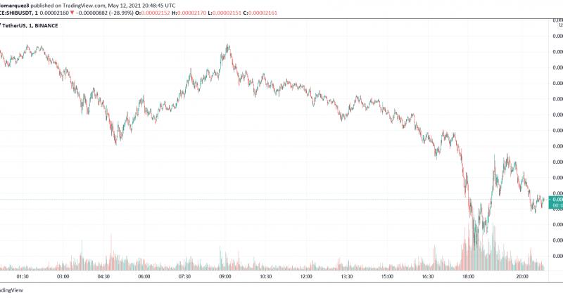 Vitalik Buterin Dumps His SHIB, Price Tanks 30% In 1 Hour