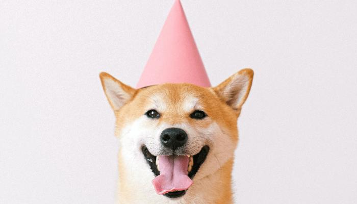 Dogecoin (DOGE) nu te gebruiken bij Coinbase Commerce aangesloten winkels