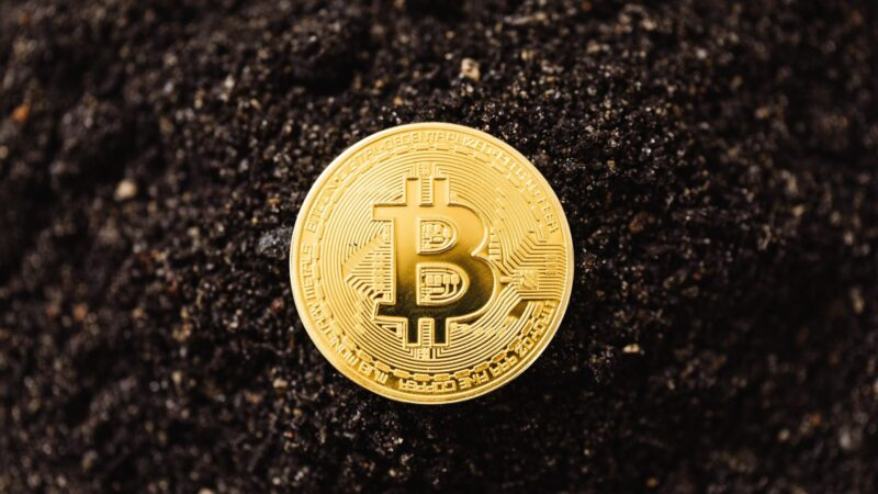 Angst onder crypto-investeerders nu Bitcoin onder $40.000 is gedaald