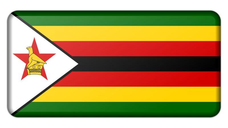 Cryptocurrencies zijn onmogelijk te negeren, aldus minister van Financiën van Zimbabwe